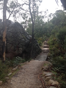 Halls Gap Trails